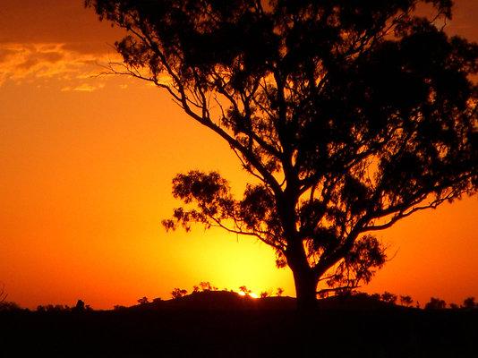 Parkes Sunset